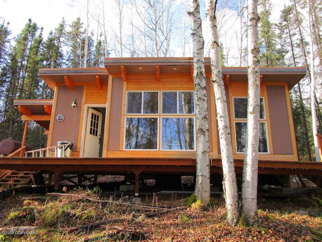 1101 Old Chatanika Trail, Fairbanks, AK 99712 (MLS #19-16502) :: Wolf Real Estate Professionals