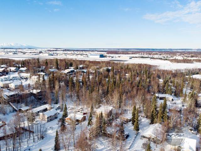 000 Blackberry Street, Anchorage, AK 99502 (MLS #19-16587) :: Wolf Real Estate Professionals