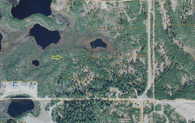 Tr K No Road, Big Lake, AK 99652 (MLS #19-16649) :: Wolf Real Estate Professionals