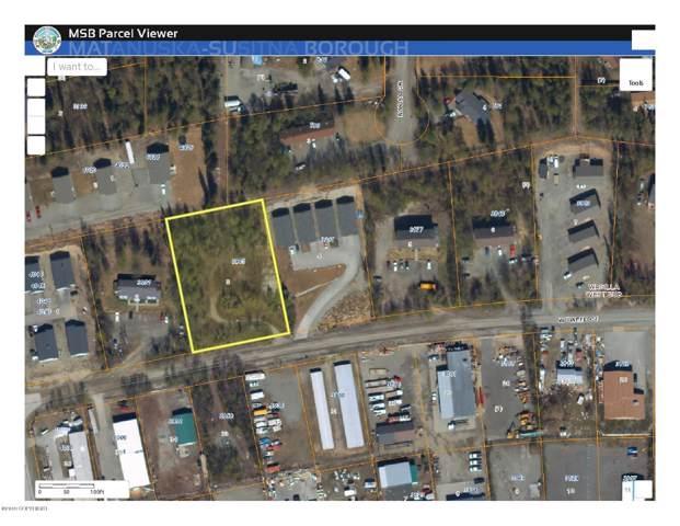 3945 W Tweed Court, Wasilla, AK 99623 (MLS #19-16665) :: Team Dimmick