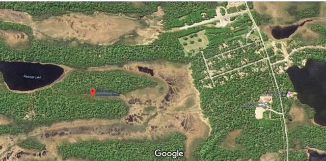 21548 S Moonbeam Street, Trapper Creek, AK 99683 (MLS #19-16709) :: RMG Real Estate Network | Keller Williams Realty Alaska Group