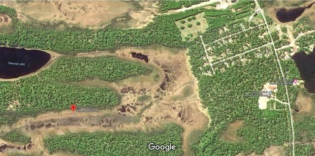 21691 S Moonbeam Street, Trapper Creek, AK 99683 (MLS #19-16710) :: RMG Real Estate Network | Keller Williams Realty Alaska Group