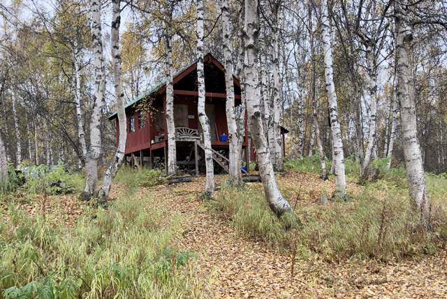Tr A W No Road, Remote, AK 99000 (MLS #19-16728) :: RMG Real Estate Network | Keller Williams Realty Alaska Group