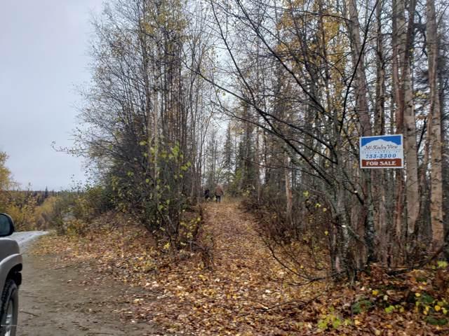37494 S Malaspina Loop, Talkeetna, AK 99676 (MLS #19-16751) :: RMG Real Estate Network | Keller Williams Realty Alaska Group