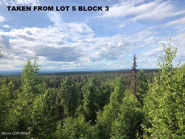 40582 S Birch Bark Drive, Remote, AK 99000 (MLS #19-16859) :: Core Real Estate Group