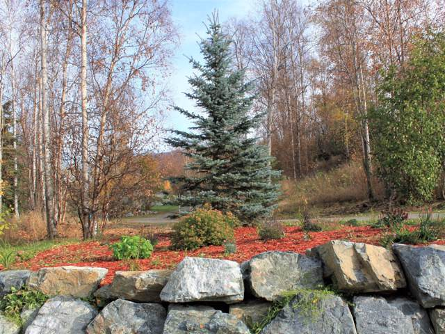 18251 Bending Birch Drive, Chugiak, AK 99567 (MLS #19-16865) :: Core Real Estate Group