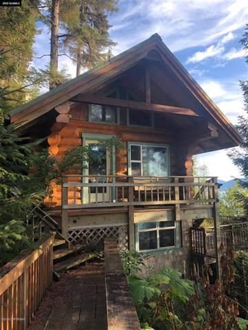 19977 Cohen Drive, Remote, AK 99000 (MLS #19-16909) :: RMG Real Estate Network | Keller Williams Realty Alaska Group