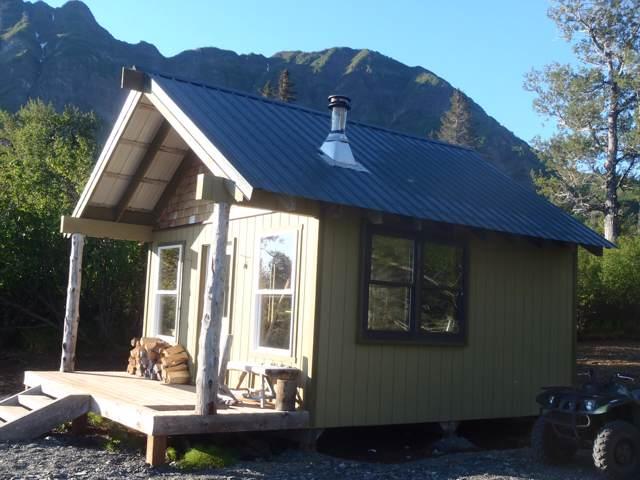 L2A Chinitna Bay, Remote, AK 99000 (MLS #19-16945) :: RMG Real Estate Network | Keller Williams Realty Alaska Group