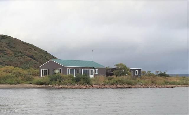 99999 N Paradise Cove Way, Pilot Point, AK 99649 (MLS #19-17039) :: RMG Real Estate Network | Keller Williams Realty Alaska Group