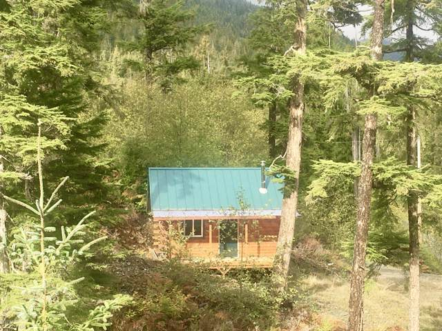 2B Canoe Pass Road, Hollis, AK 99000 (MLS #19-17062) :: RMG Real Estate Network | Keller Williams Realty Alaska Group