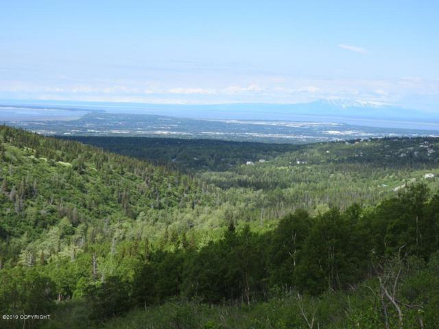 L4 Canyon Road, Anchorage, AK 99516 (MLS #19-1712) :: The Huntley Owen Team