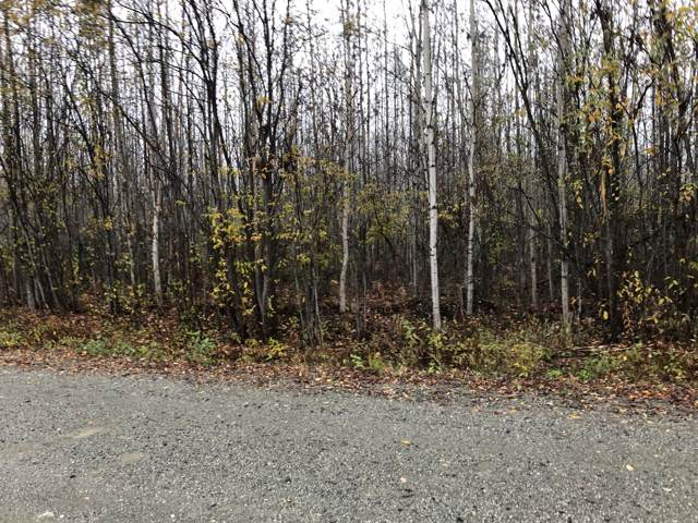 2723 S Beechwood Circle, Big Lake, AK 99652 (MLS #19-17168) :: Wolf Real Estate Professionals