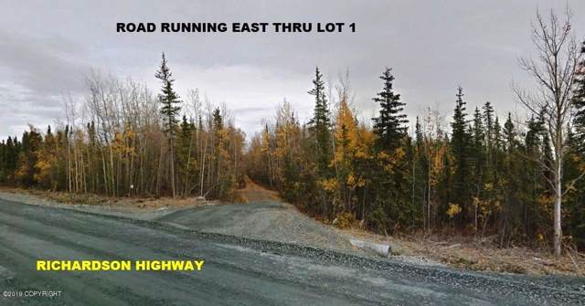 Lot 1 Richardson Highway, Gakona, AK 99586 (MLS #19-17187) :: Wolf Real Estate Professionals