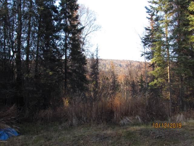 6988 Dan Joe Street, Wasilla, AK 99623 (MLS #19-17190) :: RMG Real Estate Network   Keller Williams Realty Alaska Group