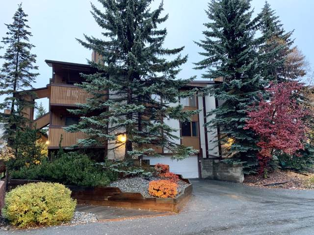 7340 Huntsmen Circle #14H, Anchorage, AK 99518 (MLS #19-17208) :: Team Dimmick
