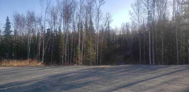 7590 W Ryan Drive, Wasilla, AK 99623 (MLS #19-17260) :: Wolf Real Estate Professionals