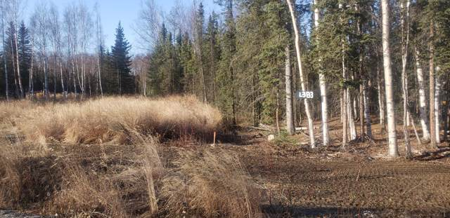 3184 S Morgan Drive, Wasilla, AK 99623 (MLS #19-17264) :: Wolf Real Estate Professionals