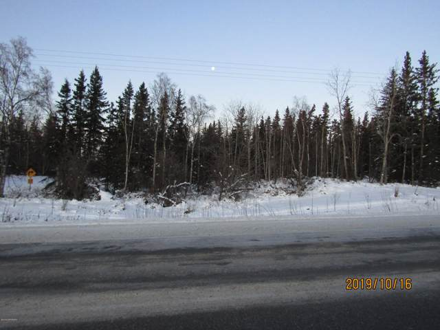 L12 Richardson Highway, Delta Junction, AK 99737 (MLS #19-17376) :: Core Real Estate Group