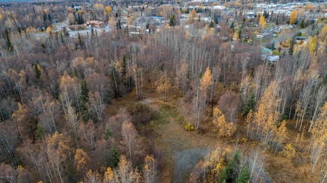 143 Foothill Road, Soldotna, AK 99669 (MLS #19-17476) :: Wolf Real Estate Professionals