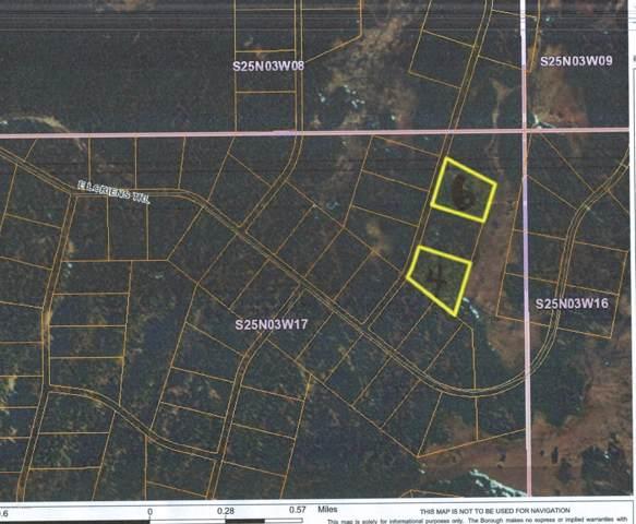 L4 B13 No Road Trail, Talkeetna, AK 99676 (MLS #19-17568) :: RMG Real Estate Network | Keller Williams Realty Alaska Group