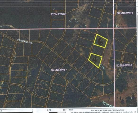 L6 B13 No Road Trail, Talkeetna, AK 99676 (MLS #19-17569) :: RMG Real Estate Network | Keller Williams Realty Alaska Group