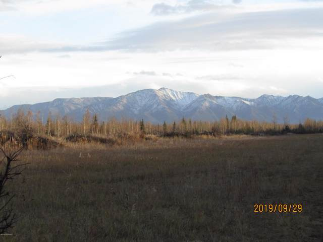Tract O & Quail Road, Delta Junction, AK 99737 (MLS #19-17571) :: RMG Real Estate Network | Keller Williams Realty Alaska Group