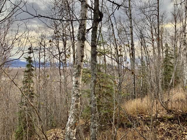 3241 S Caryshea Street, Wasilla, AK 99654 (MLS #19-17582) :: The Adrian Jaime Group | Keller Williams Realty Alaska