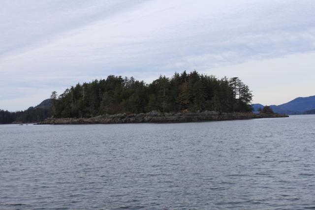 L22 Stephenson Island, Sitka, AK 99835 (MLS #19-1763) :: The Huntley Owen Team