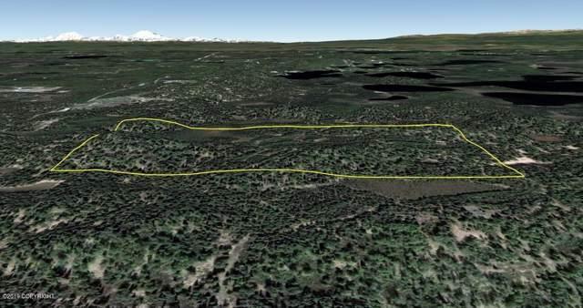 D002 No Road, Wasilla, AK 99654 (MLS #19-17642) :: RMG Real Estate Network | Keller Williams Realty Alaska Group