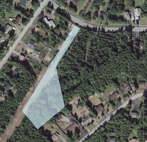 22970 Sheltering Spruce Avenue, Chugiak, AK 99567 (MLS #19-17712) :: Roy Briley Real Estate Group