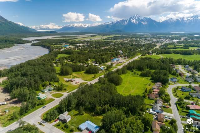 Tr 5 Glenn Highway, Palmer, AK 99645 (MLS #19-17752) :: Wolf Real Estate Professionals