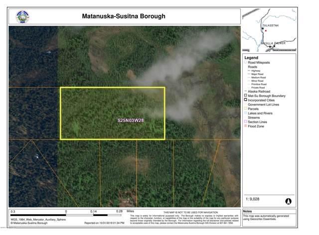 Tr B No Road Trail, Talkeetna, AK 99676 (MLS #19-17993) :: RMG Real Estate Network | Keller Williams Realty Alaska Group