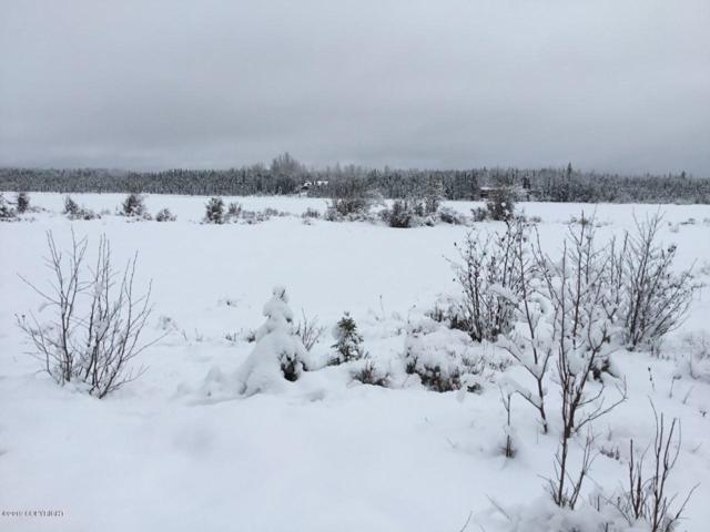 39112 Moose River Drive, Sterling, AK 99672 (MLS #19-1801) :: The Huntley Owen Team