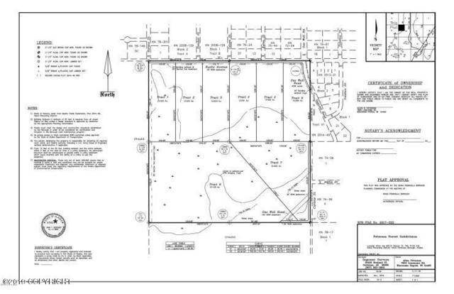48833 Rustic Avenue, Soldotna, AK 99669 (MLS #19-1806) :: The Adrian Jaime Group | Keller Williams Realty Alaska