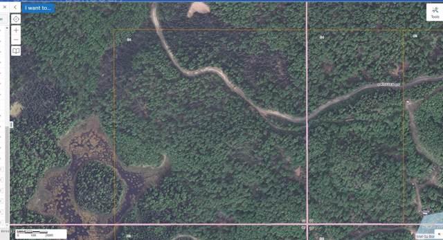 D001 Kuster Drive, Big Lake, AK 99654 (MLS #19-18109) :: RMG Real Estate Network | Keller Williams Realty Alaska Group
