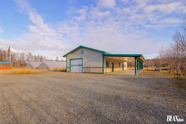 4985 W Fairview Loop, Wasilla, AK 99654 (MLS #19-18187) :: RMG Real Estate Network | Keller Williams Realty Alaska Group