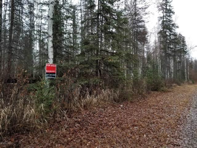 19527 W Gina Circle, Willow, AK 99688 (MLS #19-18388) :: Wolf Real Estate Professionals