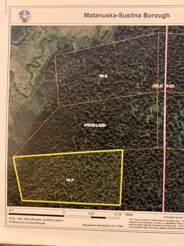 Tr F No Road, Willow, AK 99688 (MLS #19-18494) :: RMG Real Estate Network | Keller Williams Realty Alaska Group