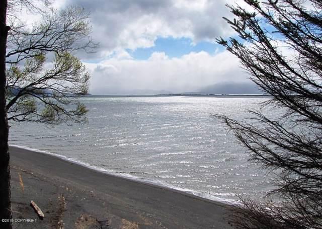 2697 Kachemak Drive, Homer, AK 99603 (MLS #19-18637) :: Alaska Realty Experts
