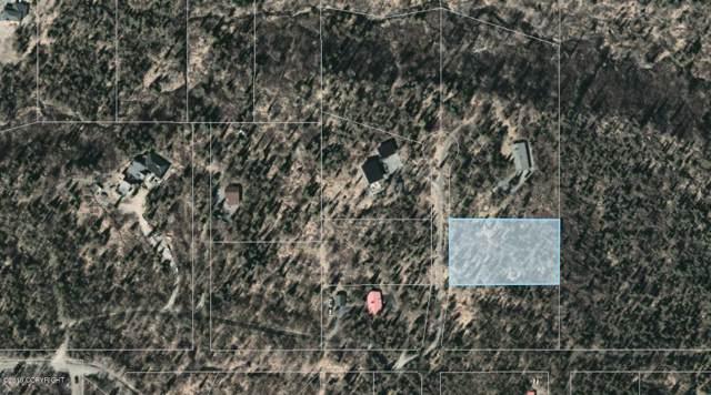 L6 Blair View Circle, Anchorage, AK 99516 (MLS #19-18822) :: Core Real Estate Group