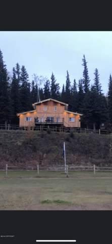 L19 Quartz Lake, Remote, AK 99000 (MLS #19-18836) :: RMG Real Estate Network | Keller Williams Realty Alaska Group