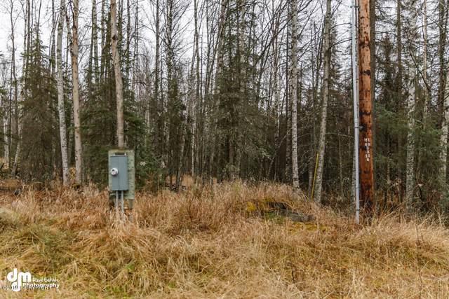 3640 N Schmidt Circle, Wasilla, AK 99654 (MLS #19-18877) :: Wolf Real Estate Professionals