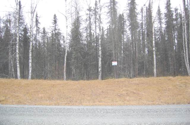 20780 E Caswell Lakes Road, Willow, AK 99688 (MLS #19-18928) :: Core Real Estate Group