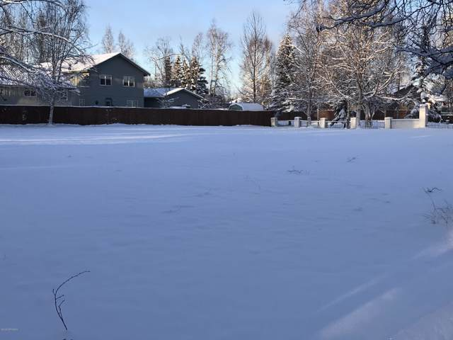 Lt 17A South Campbell Creek Tracts, Anchorage, AK 99507 (MLS #19-19188) :: Team Dimmick