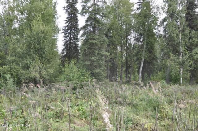 20014 Caswell Lakes Road, Willow, AK 99688 (MLS #19-19200) :: RMG Real Estate Network | Keller Williams Realty Alaska Group