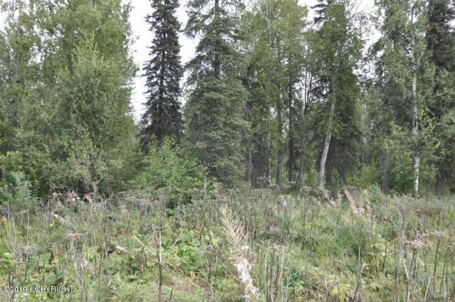 20032 Caswell Lakes Road, Willow, AK 99688 (MLS #19-19201) :: Alaska Realty Experts