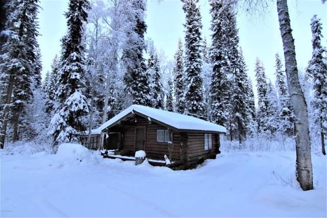 5848 Sundown Trail, Salcha, AK 99714 (MLS #19-19212) :: RMG Real Estate Network | Keller Williams Realty Alaska Group