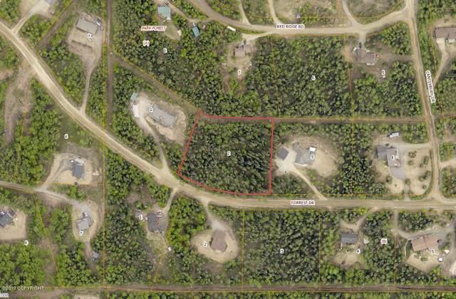 L2 BA Forrest Drive, Fairbanks, AK 99709 (MLS #19-19257) :: Roy Briley Real Estate Group