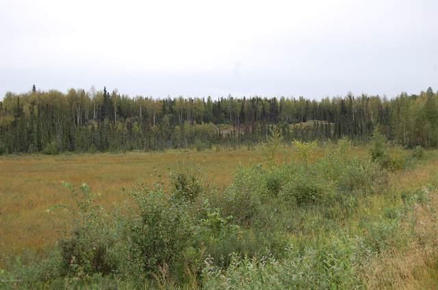 11809 W Parks Highway, Big Lake, AK 99652 (MLS #19-19263) :: Core Real Estate Group
