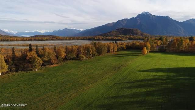 15161 E Rocky Point Drive, Palmer, AK 99645 (MLS #19-19349) :: The Adrian Jaime Group | Keller Williams Realty Alaska